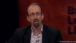 Talks and Interviews : Brian Lehrer Inte... by Sal Khan