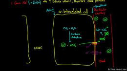 Blood Pressure Control : Aldosterone rem... Volume Science & Economics series by Rishi Desai