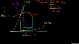 Changing the PV Loop : Arterial Elastanc... Volume Science & Economics series by Rishi Desai