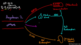 Blood Pressure Control : Angiotensin 2 r... Volume Science & Economics series by Rishi Desai