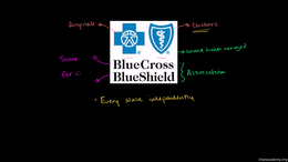 Health Care System : Blue Cross and Blue... Volume Science & Economics series by Sal Khan