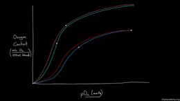 Fetal Circulation : Double Bohr Effect Volume Science & Economics series by Rishi Desai