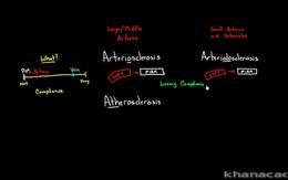 Blood Vessel Diseases : Arteriosclerosis... Volume Science & Economics series by Rishi Desai