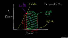Changing the PV Loop : Stroke Work in PV... Volume Science & Economics series by Rishi Desai