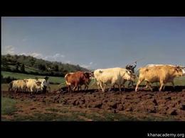 Art History: Realism : Bonheur's Plowing... by Beth Harris, Steven Zucker