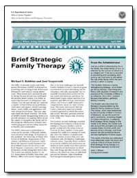 Brief Strategic Family Therapy by Robbins, Michael S.