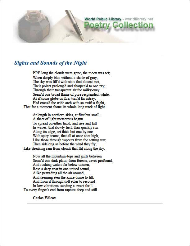 Sights and Sounds of the Night by Wilcox, Carlos