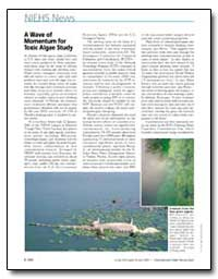 A Wave of Momentum for Toxic Algae Study by Burgess, Carla