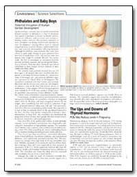Phthalates and Baby Boys Potential Disru... by United Nations