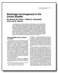 Multistage Carcinogenesis in the Urinary... by Cohen, Samuel M.