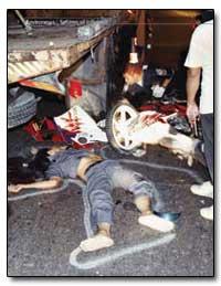 Vehicular Manslaughter : The Global Epid... by Dahl, Richard