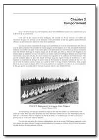 Comportement by Food and Agriculture Organization of the United Na...