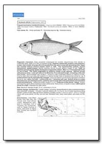 Sardinella Albella by Food and Agriculture Organization of the United Na...