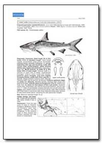 Bony Fishes : Arius Nella by Food and Agriculture Organization of the United Na...