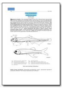 Order Stomiiformes by Food and Agriculture Organization of the United Na...