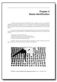 Geese Identification by Food and Agriculture Organization of the United Na...