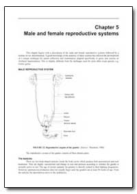Male and Female Reproductive Systems by Food and Agriculture Organization of the United Na...