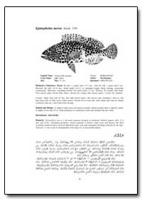Epinephelus Merra Bloch, 1793 by Food and Agriculture Organization of the United Na...