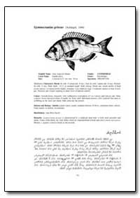 Gymnocranius Griseus (Schlegel, 1844) by Food and Agriculture Organization of the United Na...
