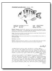 Abudefduf Septemfasciatus (Cuvier, 1830) by Food and Agriculture Organization of the United Na...