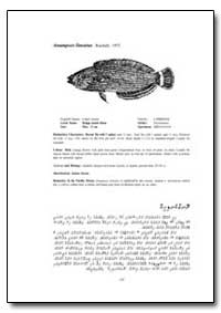 Anampses Lineatus Randall, 1972 by Food and Agriculture Organization of the United Na...