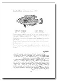 Pseudocheilinus Hexataenia (Bleeker, 185... by Food and Agriculture Organization of the United Na...
