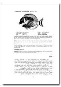 Acanthurus Leucosternon Bennett. 1832 by Food and Agriculture Organization of the United Na...