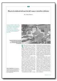 Hacia la Industrializacion Del Sauce-Mim... by Romero, M. I. Abalos