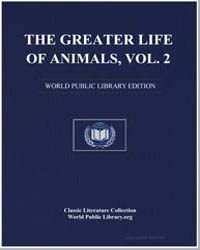The Greater Life of Animals, Volume 2 by Damīrī, Muḥammad ibn Mūsá