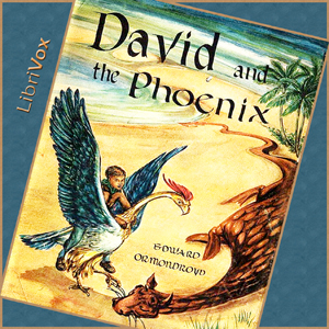 David and the Phoenix by Ormondroyd, Edward