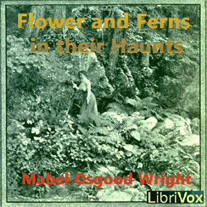 Flowers and Ferns in their Haunts by Wright, Mabel Osgood
