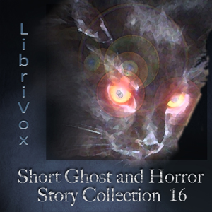Short Ghost and Horror Collection 016 by Various