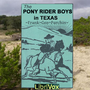 Pony Rider Boys in Texas, The by Patchin, Frank Gee