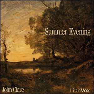Summer Evening by Clare, John