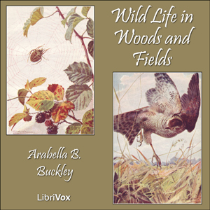 Wild Life in Woods and Fields by Buckley, Arabella B.