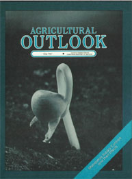 Agricultural Outlook : May 1987 Volume Issue May 1987 by Usda