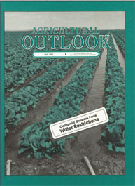 Agricultural Outlook : April 1989 Volume Issue April 1989 by Usda