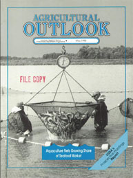 Agricultural Outlook : May 1993 Volume Issue May 1993 by Usda