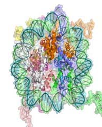 Epigenetics 2010 : by Public Library of Science