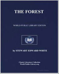 The Forest by White, Stewart Edward
