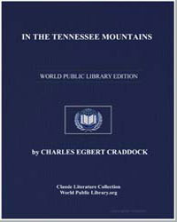 In the Tennessee Mountains by Craddock, Charles Egbert