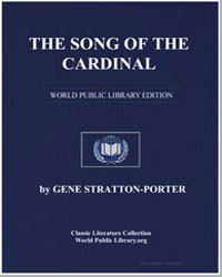 The Song of the Cardinal by Porter, Gene Stratton