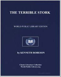 The Terrible Stork by Robeson, Kenneth