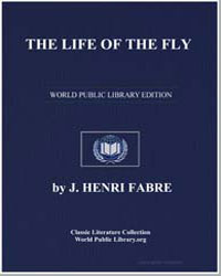 The Life of the Fly by Fabre, J. Henri
