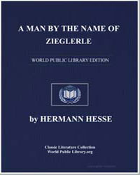 A Man by the Name of Ziegler by Hesse, Hermann