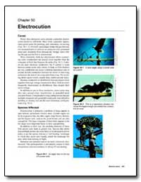Electrocution by Environmental Protection Agency