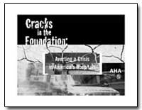 Cracks in the Foundation : Averting a Cr... by