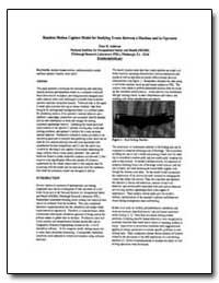 Random Motion Acapture Model for Studyin... by Ambrose, Dean H.