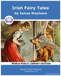 Irish Fairy Tales by Stephens, James