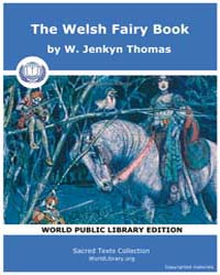 The Welsh Fairy Book by Thomas, W. Jenkyn